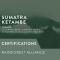SUMATRA KETAMBE (RAINFOREST ALLIANCE) - DARK ROAST